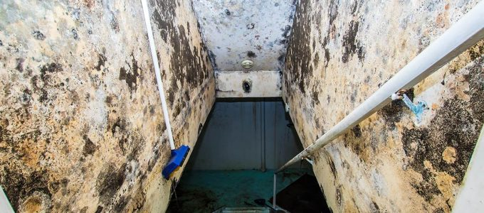Tips For Damp Proofing Old Houses